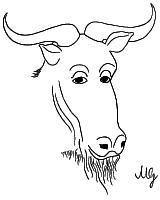 [rysunek: filozofująca GNU]