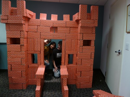 Castle of bricks