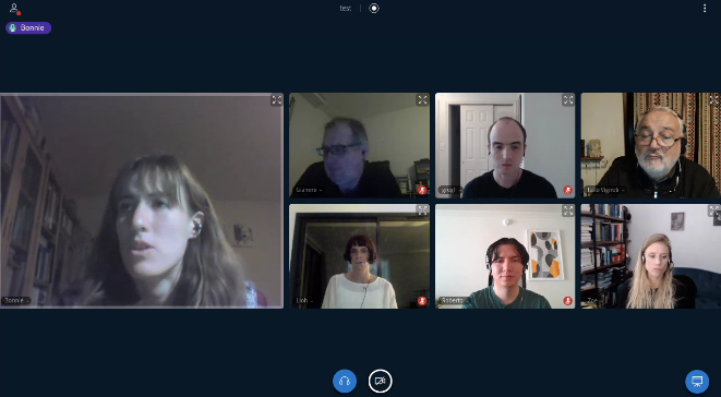 Jitsi screen with participants from international panel