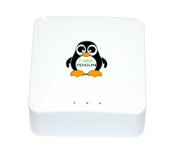 ThinkPenguin VPN router