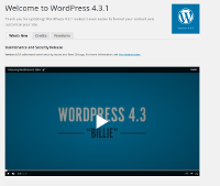 Wordpress Upgrade View